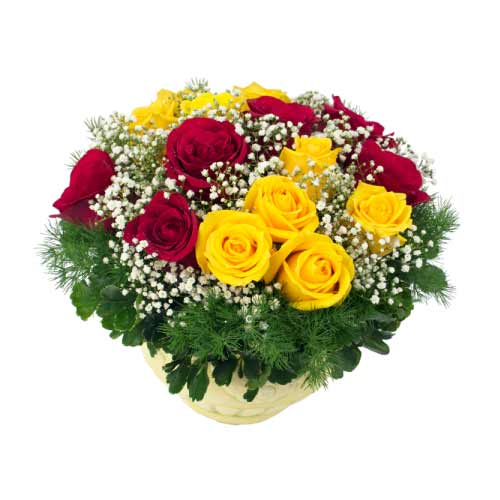 Breathtaking Selection of Multi Colored Roses in a Vase