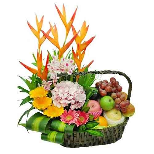 Tropical Perfect Choice Fruit Gift Basket