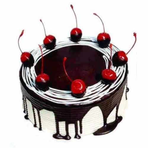 Ecstatic Dark Chocoholic Cake with Plenty of Cherry