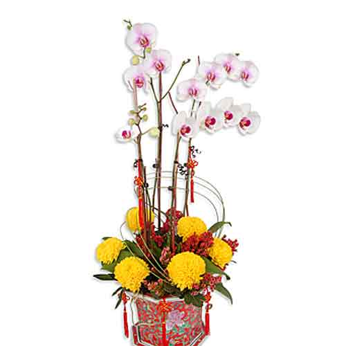Special Colorful Wishes Bouquet