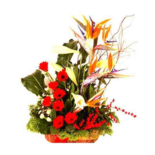 Vibrant Power of Flowers Bouquet