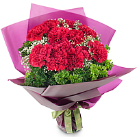 Aromatic Assemble of 1 Dozen Carnations in Red Color